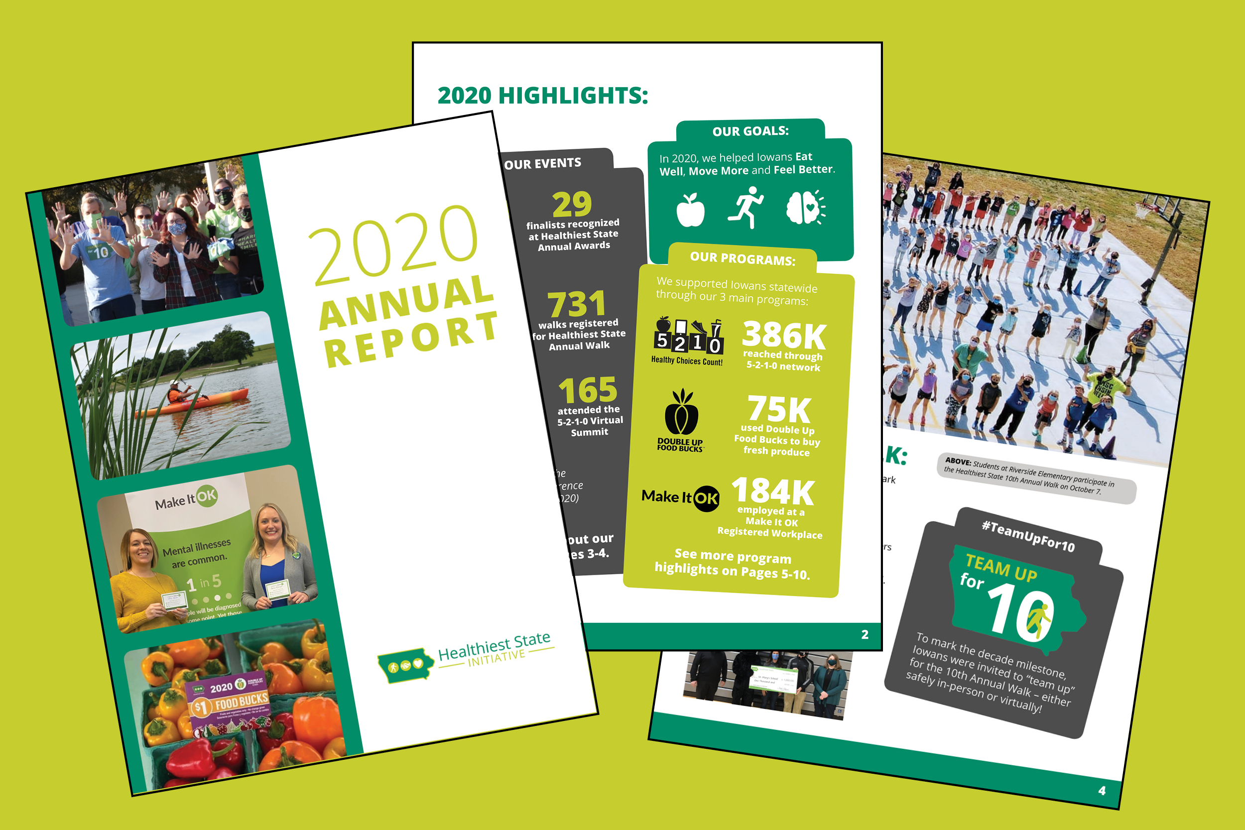Annual Report: See HSI highlights from 2020